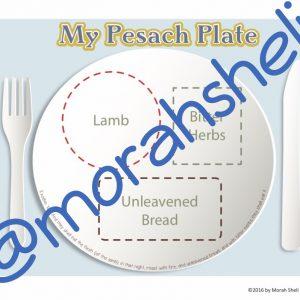 Passover Plate~MorahSheliVillage